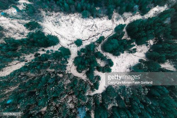 drone photo of a hiking trail in the woods - february background stock pictures, royalty-free photos & images