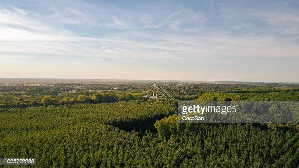 Drone photo of beautiful nature in bio-industrial area