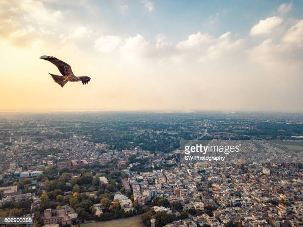 Drone photo of Lahore city, Pakistan