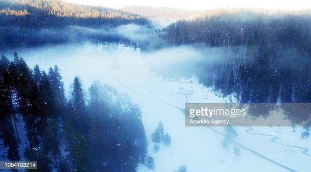 Drone photo shows a forest with snow on the ground as smoke blankets a highland of Duzce province of Turkey on October 26 2018