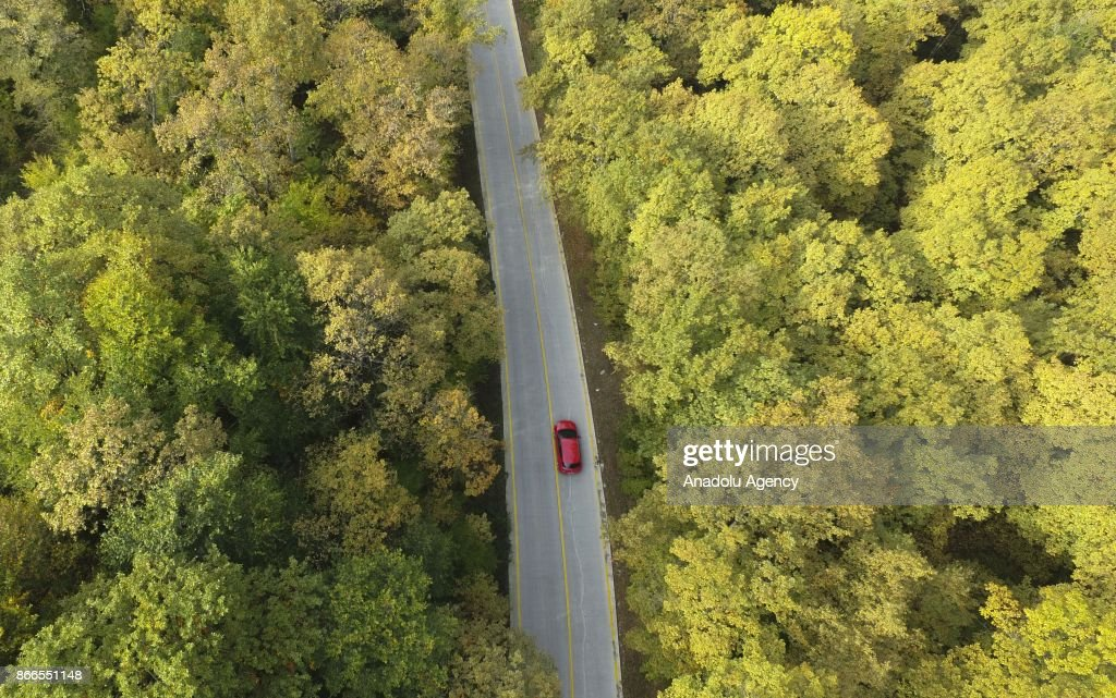 A Drone Photo Shows A Red Car Driving On A Road In The Forest With News Photo Getty Images