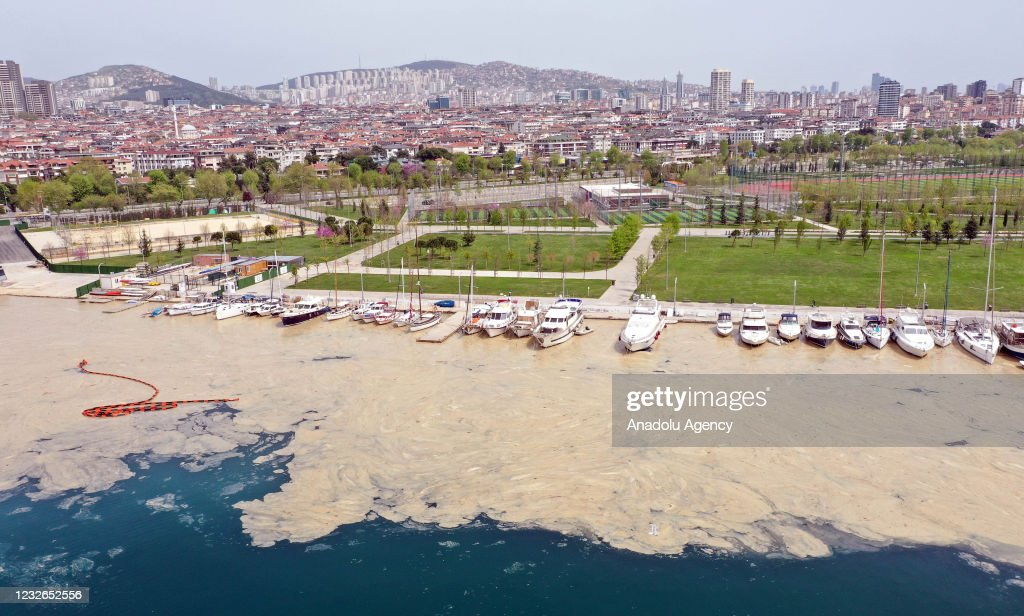 White layer formed on the sea in Anatolian side of Istanbul : News Photo