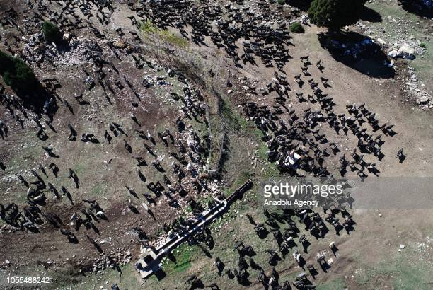 Drone photo shows the migration of Karakecili Yoruks, in tough winter conditions with around 1200 goats at Banaz district on October 27, 2018 in...