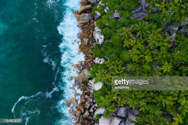 drone point of view directly above tropical island coastline - la digue island stock pictures, royalty-free photos & images