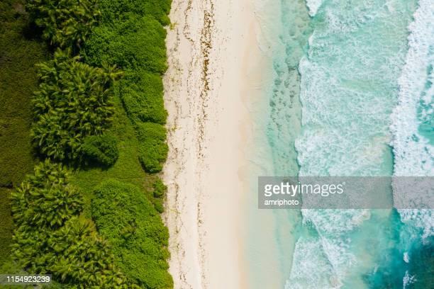 ドローンポイントオブビュートロピカルアイランドサンドビーチオーシャン - 海岸線 ストックフォトと画像