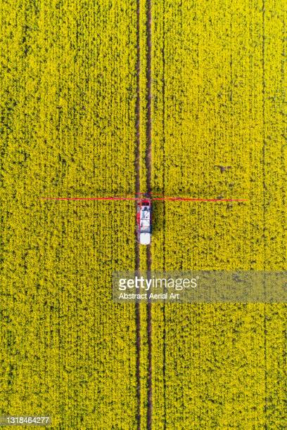drone shot above a crop sprayer in a canola field, united kingdom - crop stock pictures, royalty-free photos & images