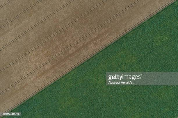 drone shot above two contrasting fields, england, united kingdom - two tone color stock pictures, royalty-free photos & images