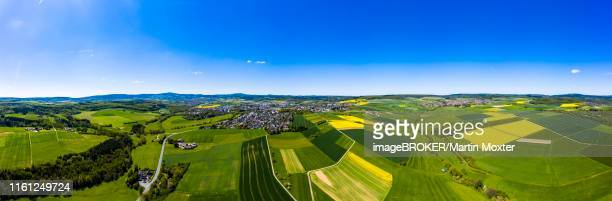drone shot, agriculture with cereal fields and flowering rape fields, usingen, schwalbach, hochtaunuskreis, hesse, germany - ヘッセン州 ストックフォトと画像
