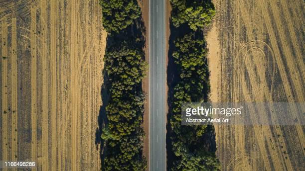 drone shot of a treelined road in an agricultural field, western australia - western australia fotografías e imágenes de stock