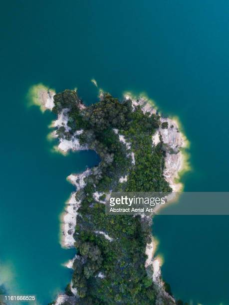 drone shot of a wooded peninsula in a reservoir, hong kong - the hobbit: an unexpected journey stock pictures, royalty-free photos & images