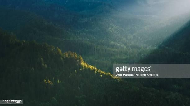 drone shot of mountain with shafts of light on the forest - schöne natur stock-fotos und bilder