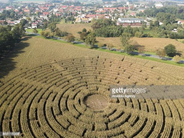 A drone view of a Corn field Labyrinth near Kobierzyce Poland September 28 2017 The Corn field Labyrinth is made of 100 thousand corn plants 3 meters...