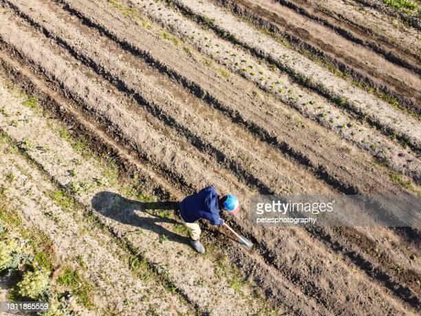 畑を耕す農家のドローンビュー - 耕す ストックフォトと画像