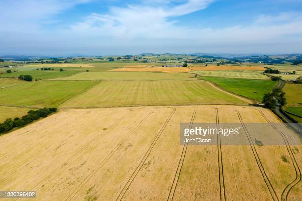 drone view of agricultural fields in rural scotland - johnfscott stock pictures, royalty-free photos & images