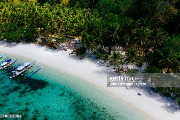 drone view of couple at beach on sunny day - paisajes de filipinas fotografías e imágenes de stock