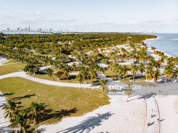 drone view of crandon park in key biscayne beach and the miami skyline. - キービスケイン ストックフォトと画像