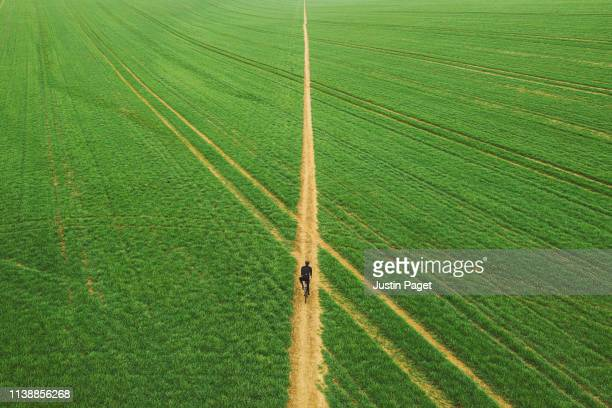 drone view of cyclist on path through field - grass picture stock pictures, royalty-free photos & images