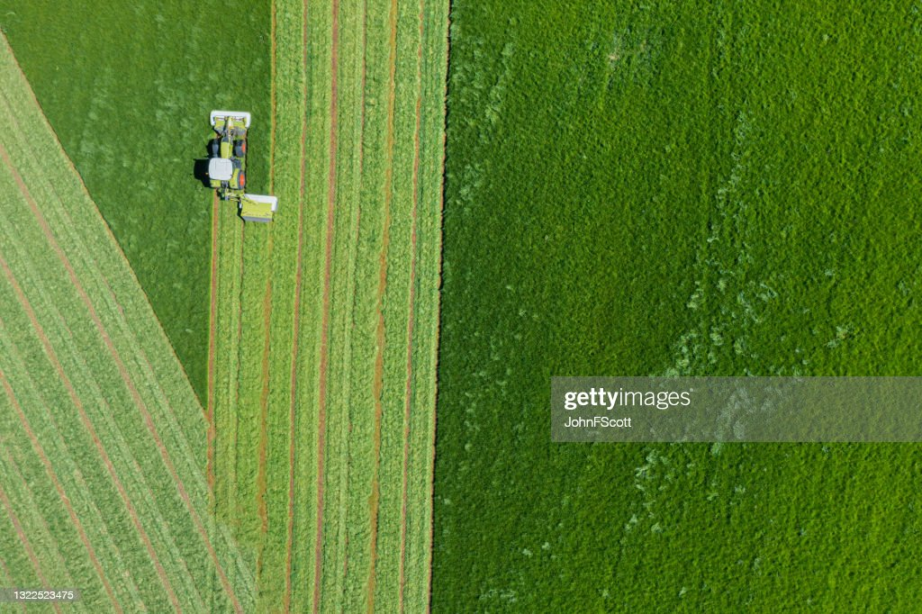 Drone view of grass being cut for silage : Stock Photo