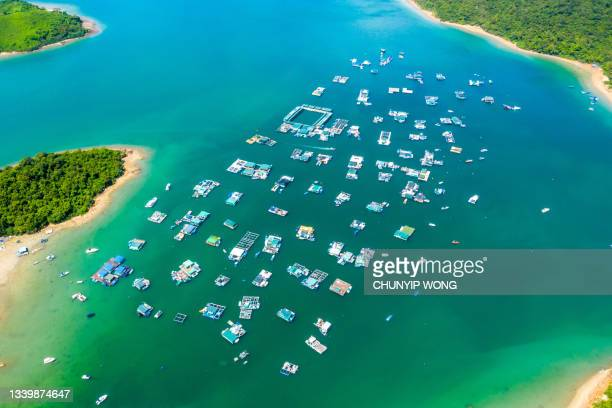 drone view of sam mun tsai village and ma shi chau special area in hong kong - country geographic area stock pictures, royalty-free photos & images