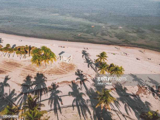 drone view of the crandon park key biscayne beach with lifeguard hut. - キービスケイン ストックフォトと画像