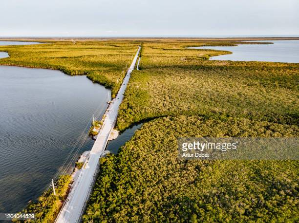 drone view of the florida keys highway between the mangroves trees in infinite landscape. - florida keys photos et images de collection