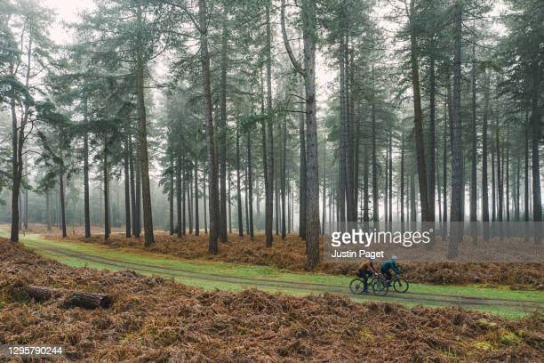drone view of two cyclists on forest track - drone point of view stock pictures, royalty-free photos & images