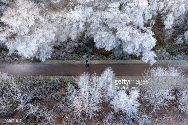 Drone view of walkers passing trees suspended in frost on January 10,2021 in Hindhead, England.