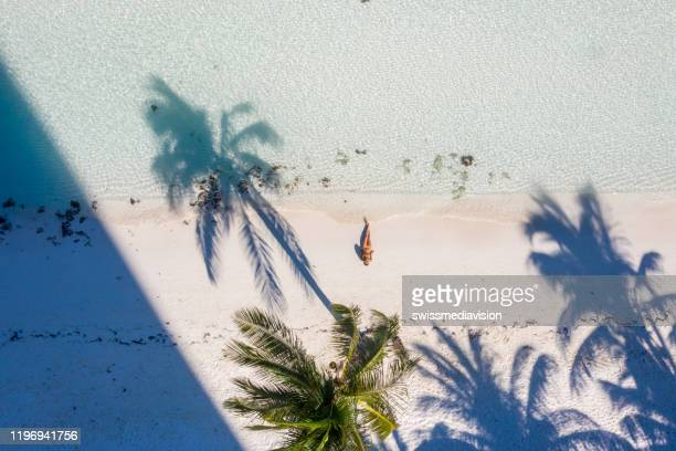drone view of woman relaxing on white sand beach with palm tress - cancun stock pictures, royalty-free photos & images