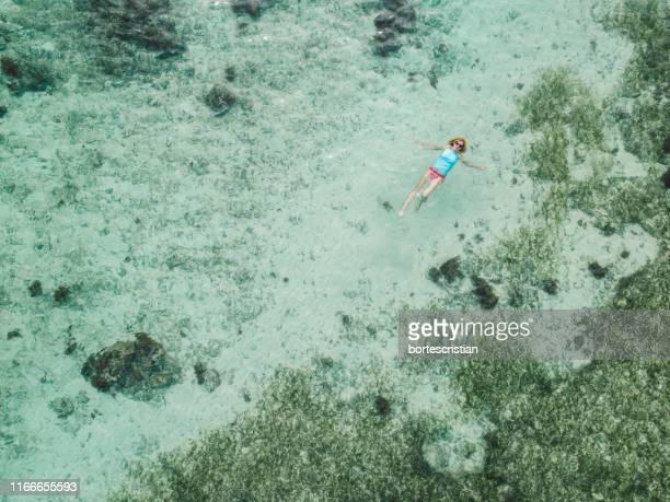 drone view of woman swimming in sea - bortes stockfoto's en -beelden