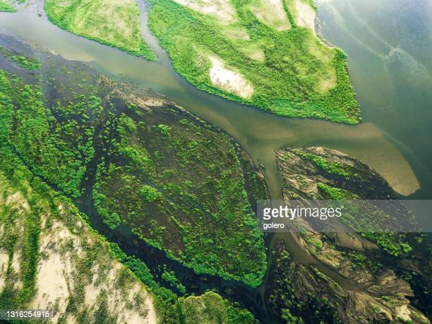 drone view on the green islands in zambezi river - zambezi river stock pictures, royalty-free photos & images