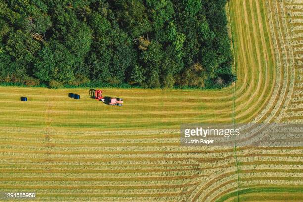 drone view onto agricultural field - a tractor is baling hay - farmer stock pictures, royalty-free photos & images