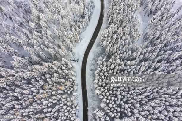 drohnen: eine antenne road trip - über leere landstraße durch winter wald schnee - dezember stock-fotos und bilder