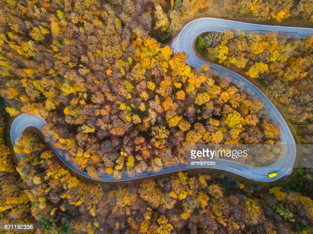 Drones: An Aerial Road Trip - autumn forest