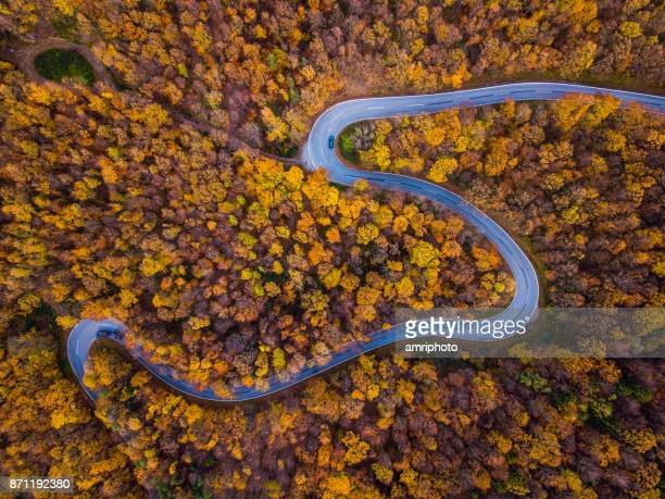 drones: an aerial road trip - curvy country road in colorful autumn forest - autumn leaf color stock pictures, royalty-free photos & images