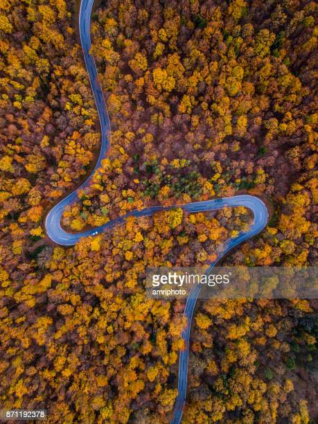 Drones: An Aerial Road Trip - curvy road through colorful forest in autumn