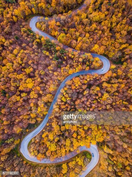 Drohnen: Eine Antenne Road Trip - kurvenreiche Straße im herbstlichen Wald