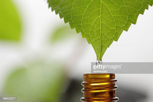 drop - essential oil stock pictures, royalty-free photos & images