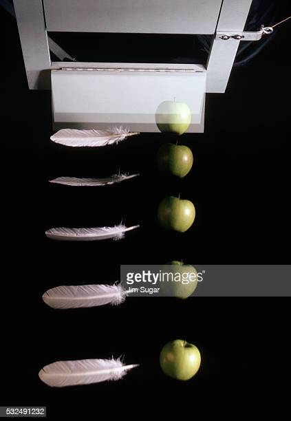 Dropping an Apple and a Feather