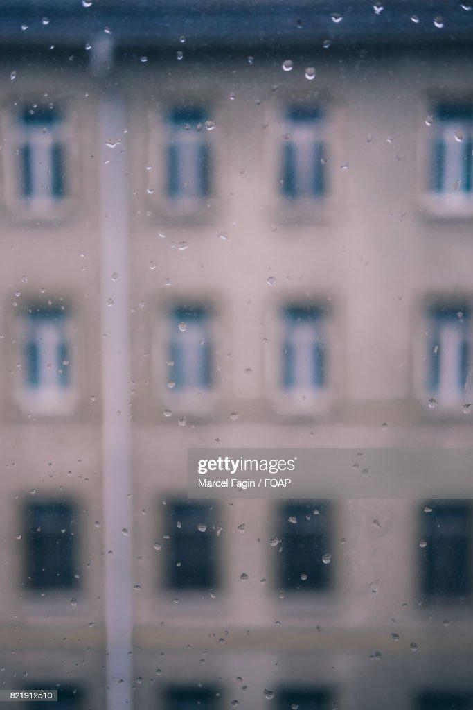 Drops on window glass : Stock Photo