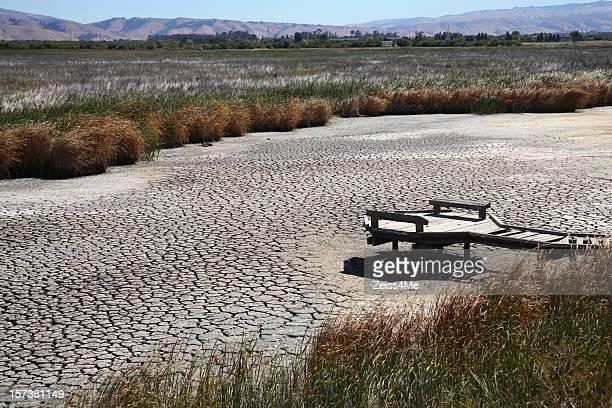 Drought conditions lead to dried up marsh or riverbed