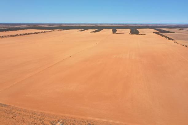Drought conditions on the Eyre Peninsula. South Australia.