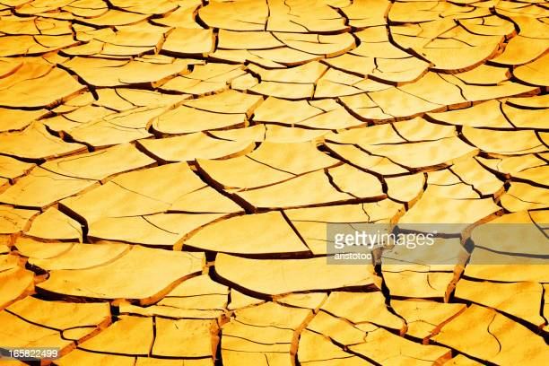 Drought: Cracked Earth Background