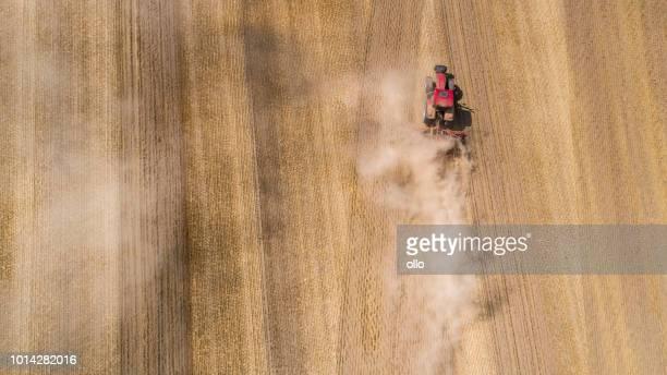 dürre in deutschland - sommer 2018 - ausgedörrt stock-fotos und bilder