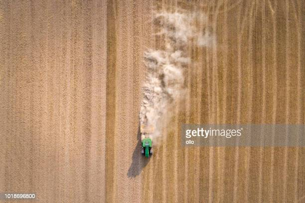 drought in germany - summer 2018 - drought stock pictures, royalty-free photos & images