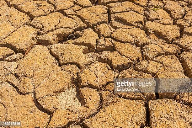Drought is an extended period when a region notes a deficiency in its water supply whether surface or underground water. A drought can last for...