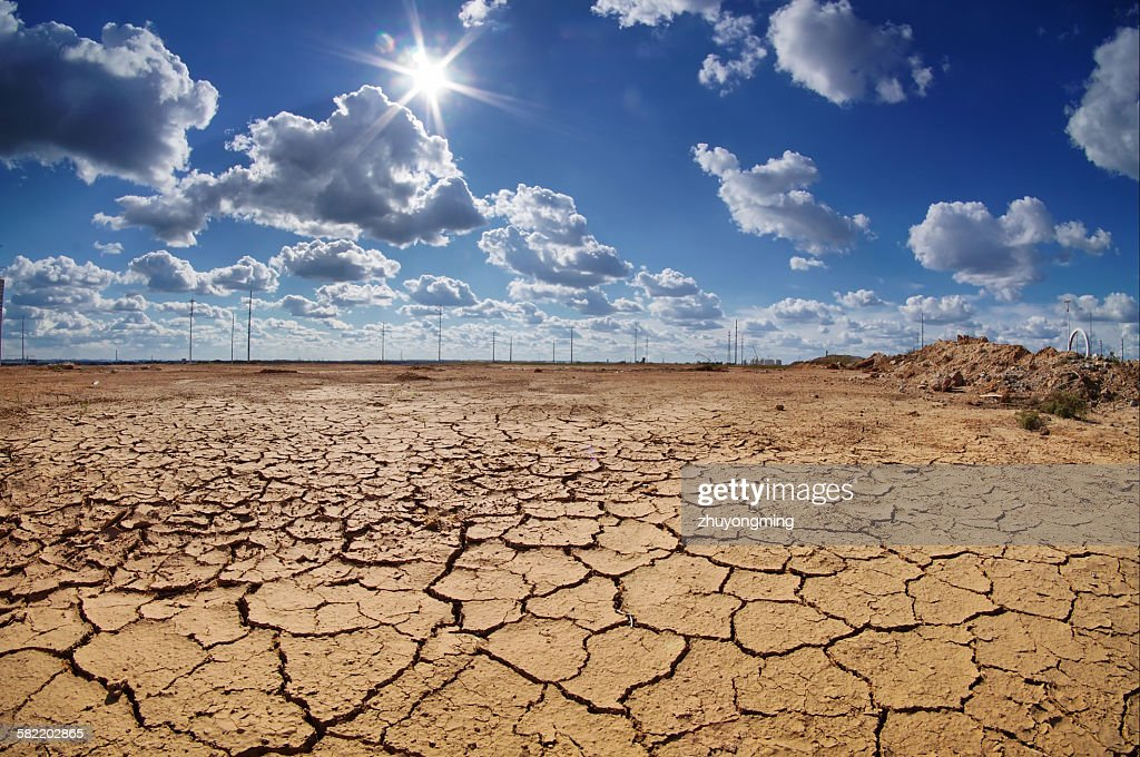 Drought land : Stock Photo