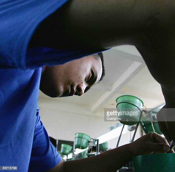 A drug rehab patient works at a workshop in a compound at the Kunming Municipal Compulsory Rehabilitation Center on July 8 2005 in Kunming Yunnan...