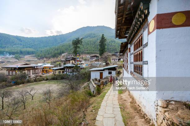 drukgyal dzong fortress and monastery in paro, bhutan springtime - paro district stock pictures, royalty-free photos & images