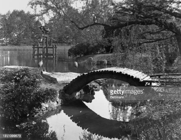 Drum bridge in the Japanese Hill-and-Pond Garden in Brooklyn Botanic Garden, Mount Prospect Park, in the borough of Brooklyn, New York City, New...