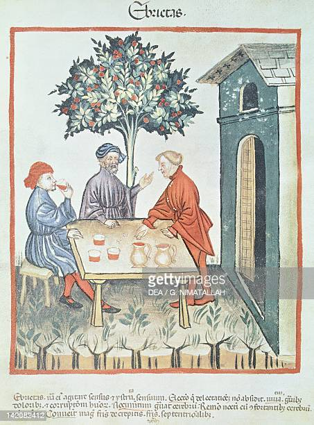 Drunkenness miniature by Giovannino de Grassi from the Tacuinum Sanitatis Italy 14th Century